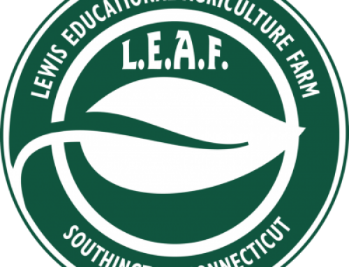 Women's Fellowship – Peg Lewis of LEAF, guest speaker